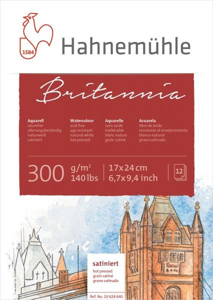 Hahnemühle | Akademie Aquarellkarton | Britannia | satiniert